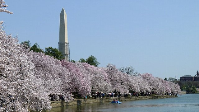 ◆ひとり旅ワシントン◆ ★ワシントンプラザに泊まる7日間 ++●現地日本語送迎付き●++