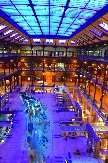 パリ国立自然史博物館